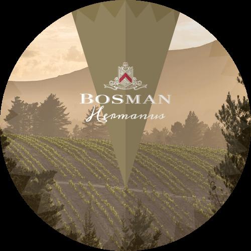 Bosman Family Vineyards Hermanus